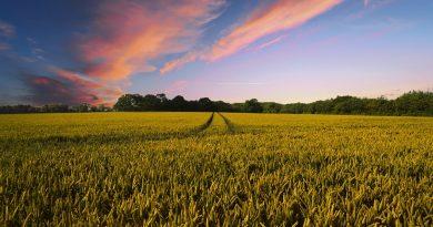 Comment gérer les intrants agricoles?