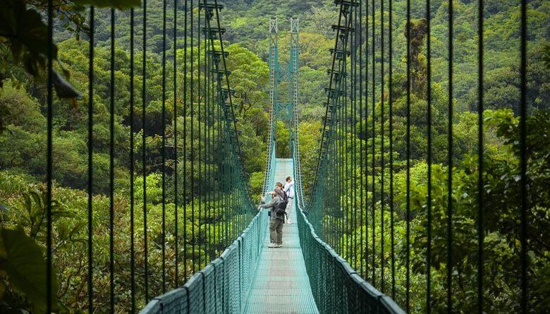 Monte_Verde_Verde Costa rica