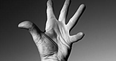 les articulations de la main