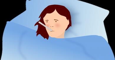 grippe maladie