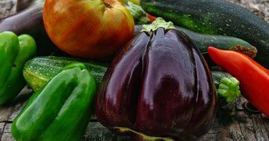 jardinage avoir son potager de légumes