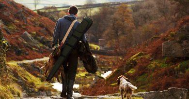 chien de chasse et son maître