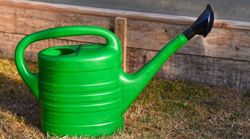 arrosoir pour le jardin