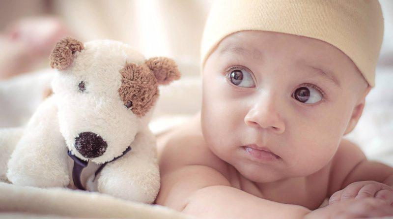image bébé